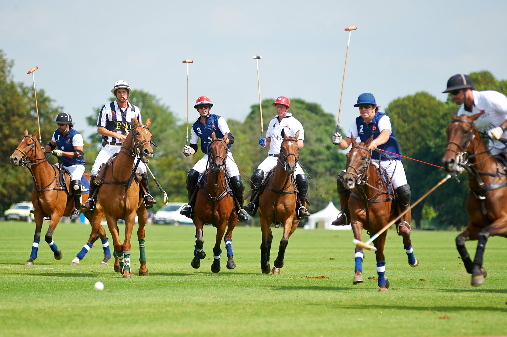 Beaufort Polo - Gallery Image #298