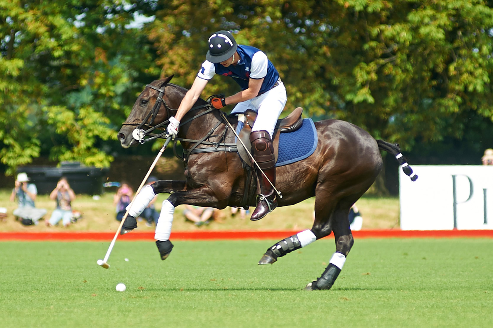 Beaufort Polo - Gallery Image #300